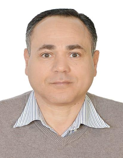 د. مدحت محمود هاشم
