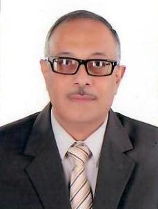 ا.د. عبدالعزيز حنفي